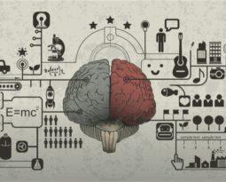 O cérebro e a mudança de hábitos
