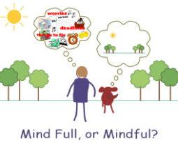 Vida mindful
